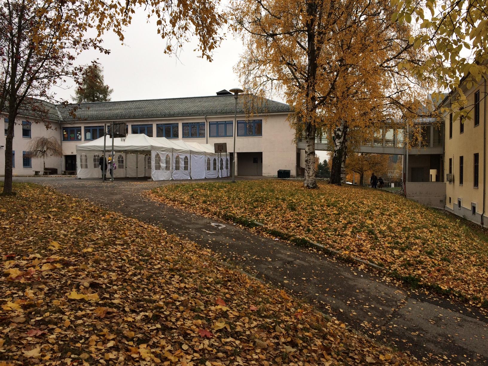 Bryn Skole